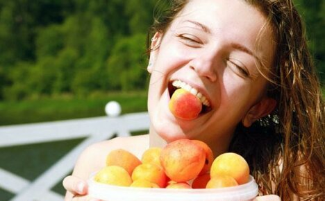 Состав и лечебные свойства абрикоса для здоровья человека