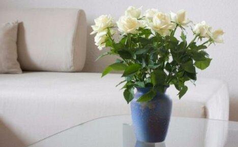Букет из роз — как сохранить дольше его свежесть