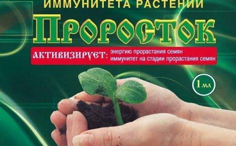Как применять стимулятор роста «Проросток»