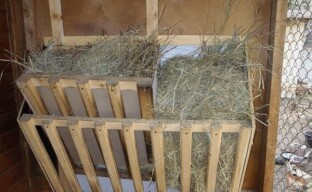 Самодельные кормушки для козлят и взрослых коз