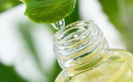 Применение сока алоэ для оздоровления организма