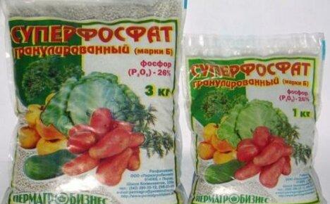 Фосфорные удобрения для томатов: виды, названия, применение