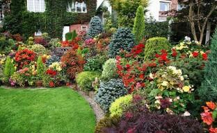 Английский цветник — роскошный вид в саду круглый год