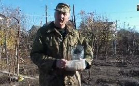 Методика выращивания чеснока на приусадебном участке — видео