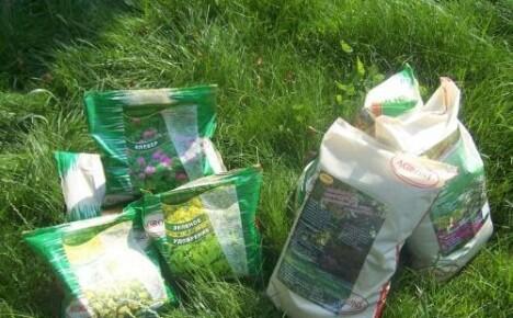 Как выбрать газонную смесь: рекомендации и характеристики