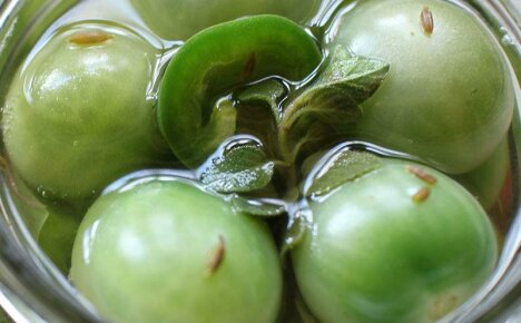 Учимся готовить на зиму соленые зеленые помидоры холодным способом