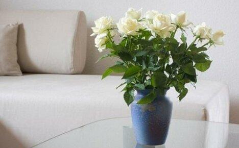 Что сделать, чтобы розы в вазе стояли дольше?
