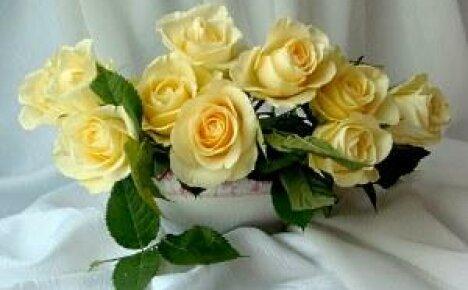 Как сохранить розы в вазе длительное время?