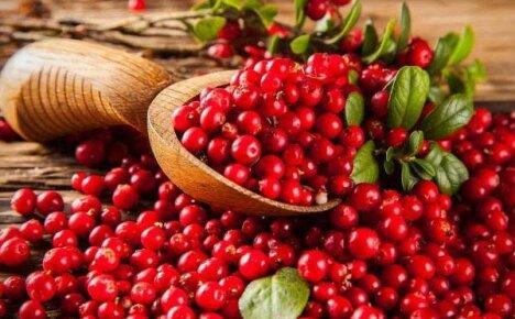 Укрепляем свое здоровье с полезной ягодой клюквой