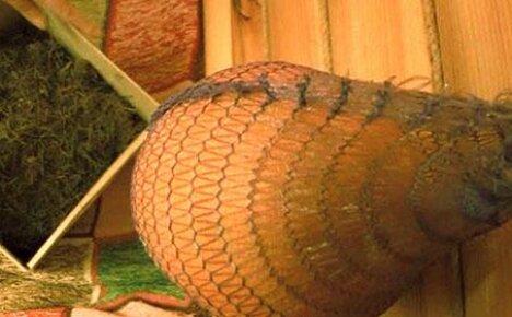 Сохраняем дыни на зиму: несколько способов сделать вкусные припасы
