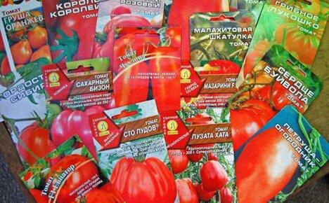 Популярные в России производители лучших сортовых семян