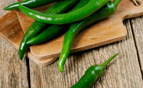 В чем польза и вред острого зеленого перца для нашего здоровья