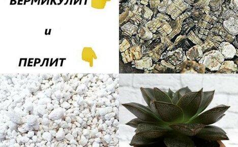 Садоводам важно знать чем отличается перлит от вермикулита