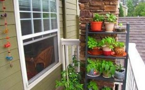 Полезные советы, как организовать огород на балконе