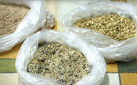 Для увеличение яйценоскости кур в зимний период нужен специальный корм