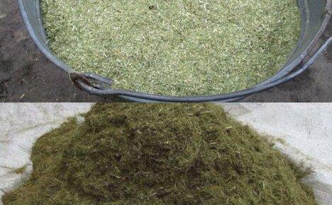 Как и для чего применяется травяная мука при выращивании животных на подворье