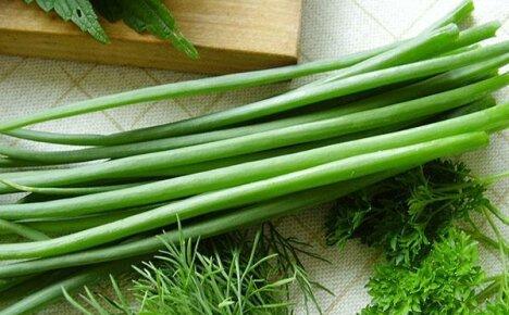 Зеленый лук и его свойства: все секреты полезного продукта