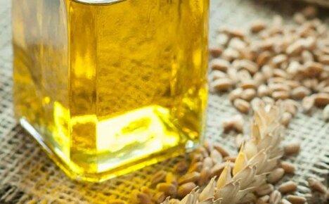 О пользе масла зародышей пшеницы и способах использования