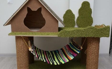 Красивый и комфортный домик для кошки своими руками