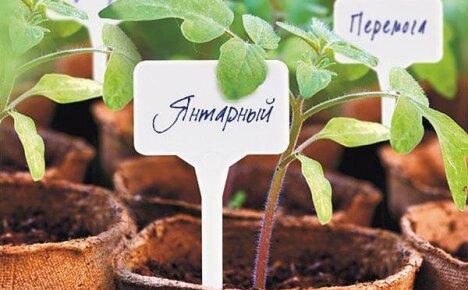 Пластиковые таблички для растений от китайского производителя