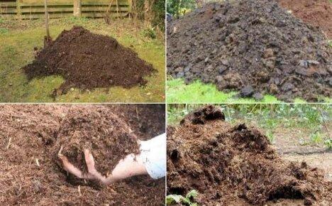 Какой навоз лучше для удобрения огорода
