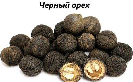 Как используется черный орех в народной медицине