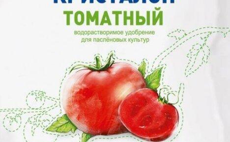 Удобрение Кристалон — применение для томатов