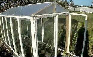 Строительство парника для растений из старых оконных рам
