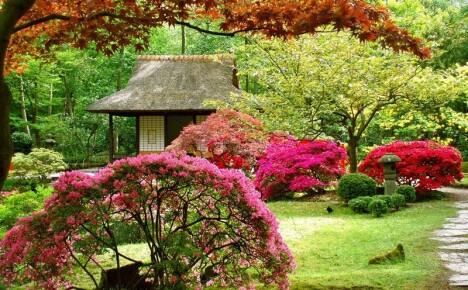 Японский стиль в ландшафтном дизайне: как сделать японский садик