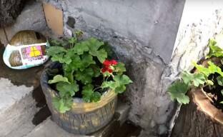 Изготовление цветочного горшка из цемента
