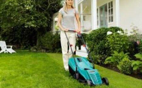 Как выбрать газонокосилку для дачи?