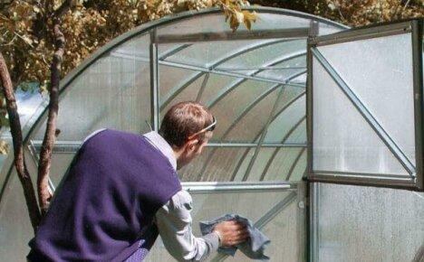 Правила обработки весной медным купоросом теплицы перед посадкой рассады