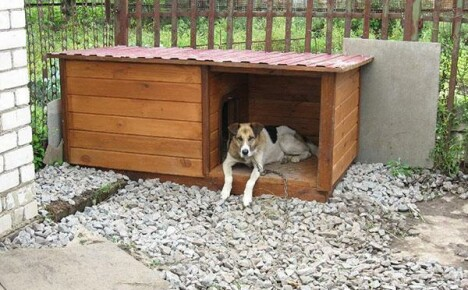 Построенная своими руками будка для собаки