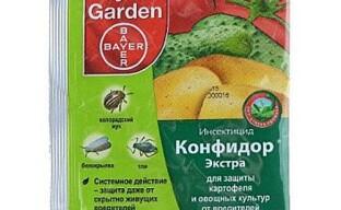Инсектицид Конфидор Экстра защитит от вредителей и повысит урожайность