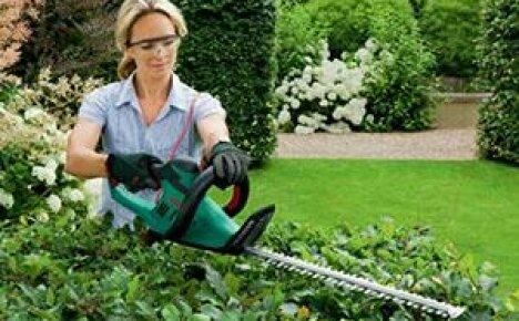 Зачем нужен кусторез электрический на садовом участке