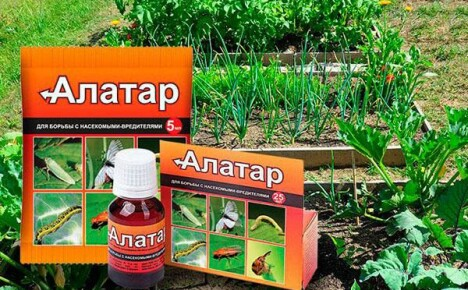 Инсектицид «Алатар»: инструкция по применению или ориентир на вредителя
