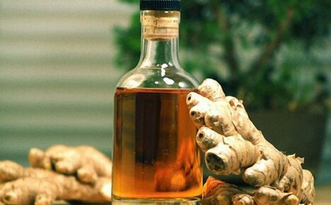 Польза и противопоказания к применению имбирной настойки на водке