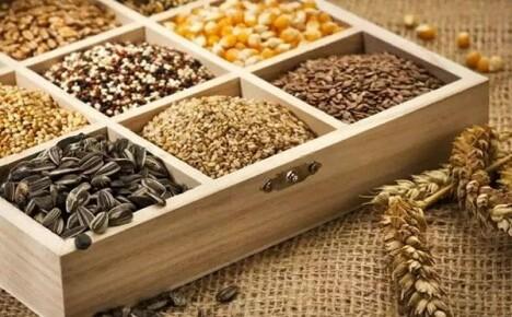 Правила сбора и хранения семян со своего приусадебного участка