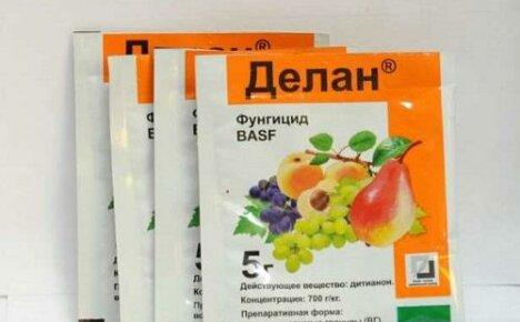 Фунгицид Делан: инструкция по применению для персика