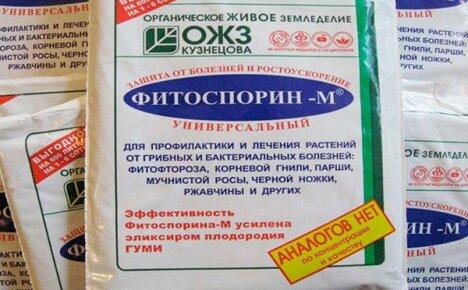 Безопасный биофунгицид фитоспорин-М для защиты растений