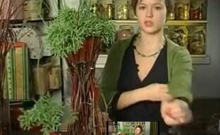 Оригинальное кашпо из веток – высокая подставка из природных материалов своими руками