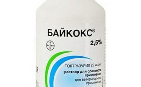 Как применять препарат Байкокс для домашних животных