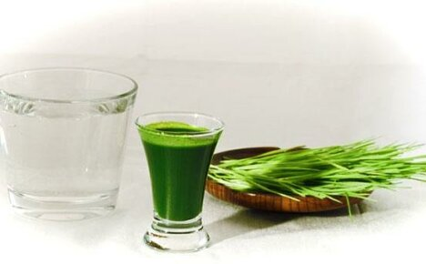 Витаминный напиток из проростков пшеницы