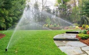Содержание сада в засушливой местности