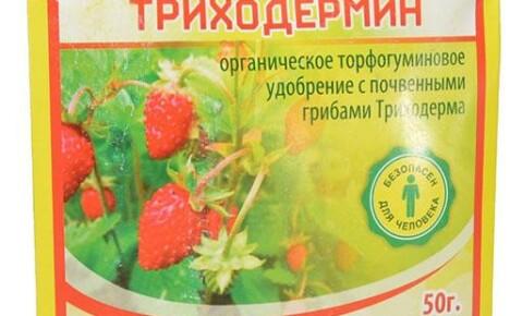 Биопрепарат Триходермин против болезней растений