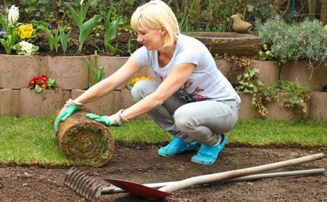 Укладка рулонного газона и уход за травяным покрытием