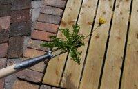 Как пользоваться ручным корнеудалителем — облегчаем себе труд