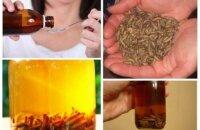Как пить восковую моль — уникальное средство для лечения и профилактики