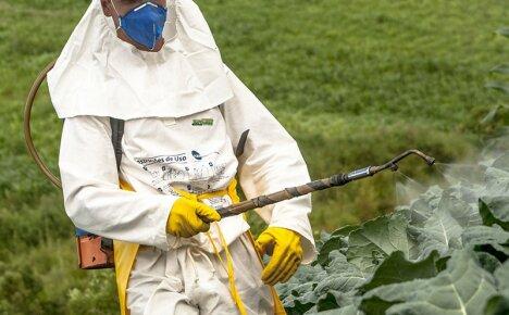 Опасное влияние пестицидов на организм человека и способы решения проблемы
