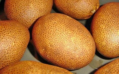Оригинальный картофель сорта Киви: происхождение и правила выращивания